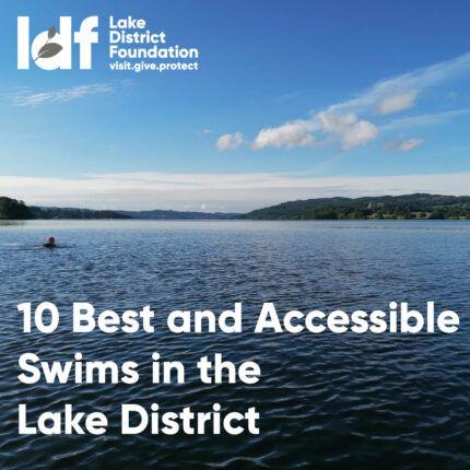 10-best-swims